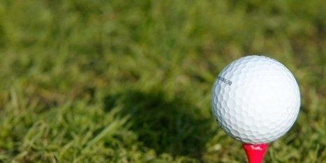 Projet de golf à Tosse : le Conseil général lance la phase de ... - Sud Ouest | actualité golf - golf des vigiers | Scoop.it