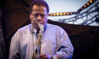 London Jazz Festival 2013: Ten acts to see   2013 Music Links   Scoop.it