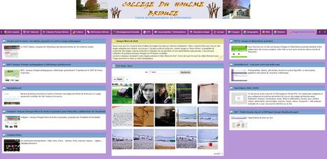 Centre de Documentation et d'Information | ressources_collège | Scoop.it