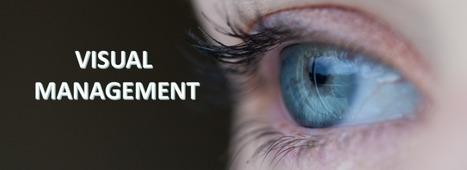 Visual Management Lean Teams USA | lean six sigma | Scoop.it