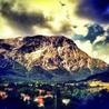 www.terredelpiceno.it