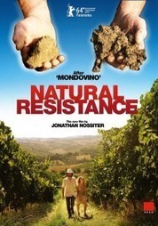 "Jonathan Nossiter | ""Natural Resistance"" à Bordeaux - cepdivin.org - les imaginaires du vin 