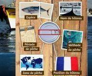 Saupiquet dit à ses clients tout ce qu'ils ont toujours voulu savoir sur ses poissons | Economie Responsable et Consommation Collaborative | Scoop.it