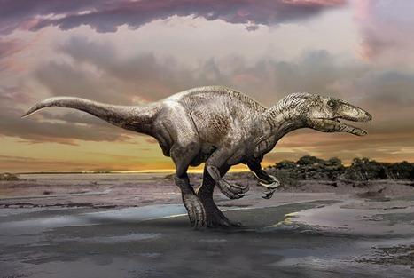 Des paléontologues ont trouvé un nouveau mégaraptor | Aux origines | Scoop.it