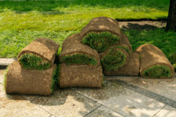 Lawn maintenance service in Pensacola, FL by Dependable Lawn Service | Dependable Lawn Service | Scoop.it