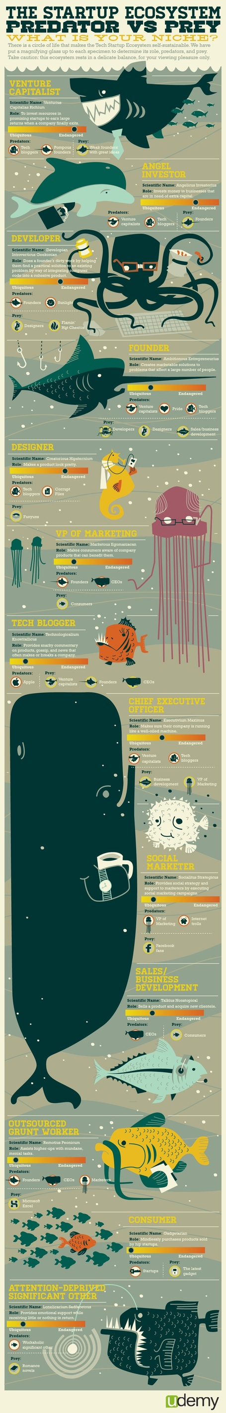 Under the sea with the startup ecosystem [Infographic] | The Jazz of Innovation | Scoop.it