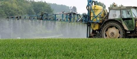 Éliminer les pesticides : bon pour l'environnement... et le porte-monnaie des maires | Consommation alternative | Scoop.it