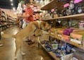 Pets are a dog-eat-dog industry - News & Observer | PBL | Scoop.it