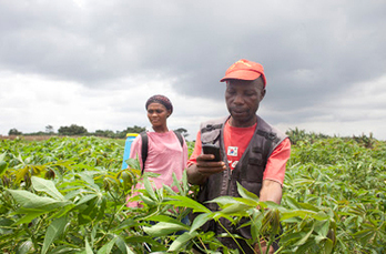 Barriers to mobile 'net  in Kenya, Ghana | Biztech Africa | Internet Development | Scoop.it