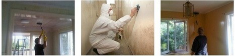 Had Enough Of Moulds In Your Home? It's Time To Call Mould Remediation Specialists   Mould Pro   Scoop.it
