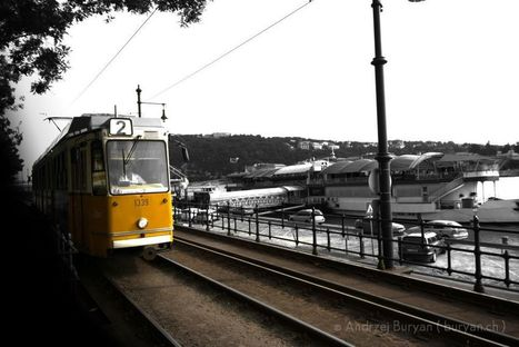 Black & Yellow - Andrzej Buryan   Photography   Scoop.it