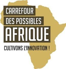 Carrefour Des Possibles Afrique  Le concept   Actions Panafricaines   Scoop.it
