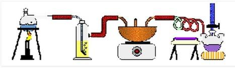 LABORATORIOS VIRTUALES Biología, Química, Física, Matemáticas, Tecnología | Biología | Scoop.it