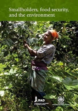 UNEP - Environment for Development : Smallholders, Food Security and the Environment Report | UNEP, IFAD | Development, agriculture, hunger, malnutrition | Scoop.it