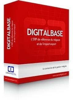 ERP import export - Digitalbase | Solutions web | Scoop.it