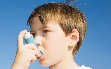 Junk food linked to asthma and eczema in children - Telegraph | The Basic Life | Scoop.it
