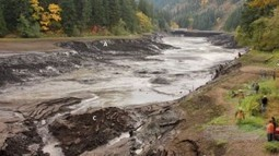 Draining Condit Dam, Washington State, shows effects of receding floodwater | Conformable Contacts | Scoop.it