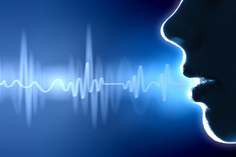 Why voice is the next big internet wave | Customer Experience Digest | Scoop.it