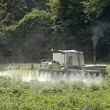 Insecticide Ingredient May Affect Cognitive Development - Natural Standard Blog (blog) | Pediatric Topics | Scoop.it