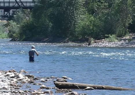 Trout Unlimited working to protect Western Montana waters - KPAX-TV | Fish Habitat | Scoop.it