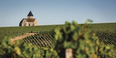 Partez en pause nature et gourmande dans le vignoble de Chablis ! - Magazine du vin - Mon Vigneron | Tourisme viticole en France | Scoop.it