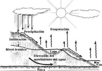 El Ciclo del Agua | Ciclo del Agua | Scoop.it