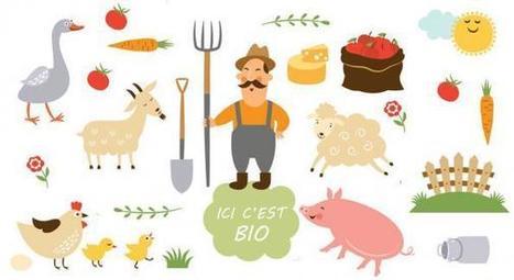 Les agriculteurs français se convertissent massivement au bio | Tout le web | Scoop.it