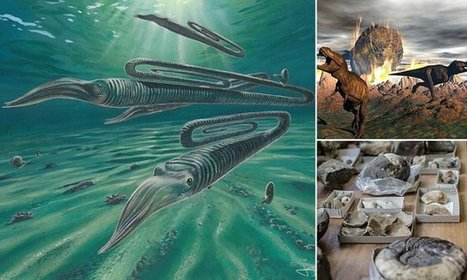 Nowhere was safe during dinosaur extinction | NERC media coverage | Scoop.it