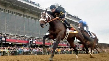Horse Racing: The Top 5 Reason Why Orb Was Beaten in the 2013 Preakness ... - isportsweb.com | This Week in Gambling - Horse Racing | Scoop.it