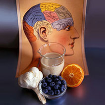Brain Food You Should Know About   Most Powerful HGH Supplements   Scoop.it