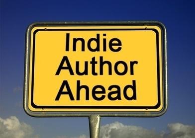USA – Des bibliothèques proposent des livres numériques autoédités | BiblioLivre | Scoop.it