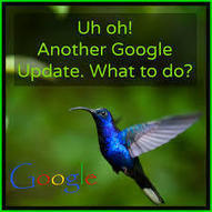 What is Google Hummingbird? « Xmedia Solutions Blog | seo | Scoop.it