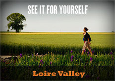 Reading for the Road: Loire Valley | Southern California Wine and Craft Spirits Journal | Scoop.it