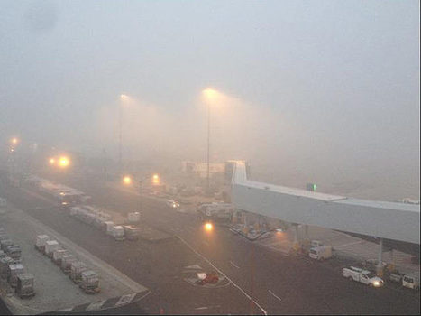 Fog causes Gold Coast flight delays - Gold Coast Bulletin News | Gold Coast Tourism | Scoop.it