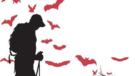 Hiking for bats - Visalia Times-Delta | Bat Biology and Ecology | Scoop.it