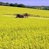 Le Sénat limite l'usage de produits phytosanitaires | Pesticides | Scoop.it