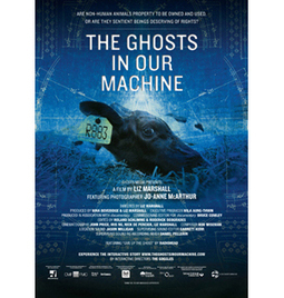 The Ghosts In Our Machine | Nature Animals humankind | Scoop.it