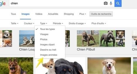 GoogleGifs. Voir les gifs animés dans les résultats de recherche de Google - Les Outils Google | Les outils du Web 2.0 | Scoop.it