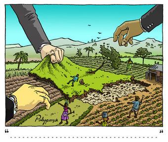Qui est responsable des accaparements de terres dans le monde? | Informer utile ! | Scoop.it