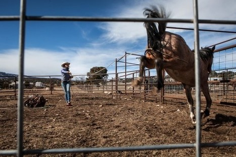 Women expand their home on the range | Geography Education | Scoop.it
