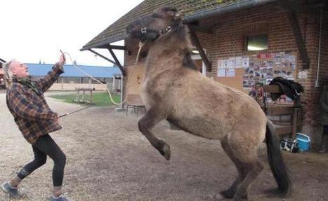 Il apprivoise chevaux et loups pour les besoins d'un film | Salon du Cheval | Scoop.it
