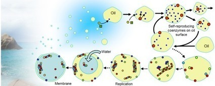 Coenzyme world model of the origin of life | Papers | Scoop.it