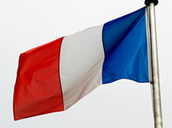 Cactus Blog | 10 Facts about French | Foreign languages teaching resources | Scoop.it