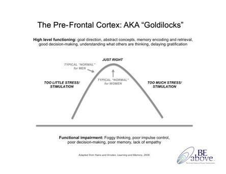 The Goldilocks of the Brain (Your Pre-Frontal Cortex) | Coaching & Neuroscience | Scoop.it