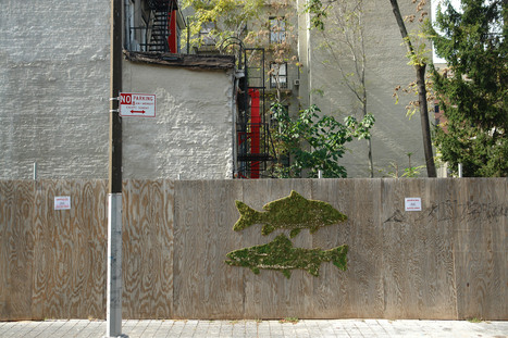 Wooster Collective: Fishes in Brooklyn | Ecograffiti | Scoop.it