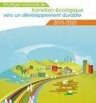 Developpement durable - Publication de la strategie nationale de transition ecologique - Environnement Magazine | Construction d'avenir | Scoop.it