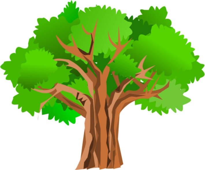 Choosing a tree for your garden made 'app'solutely easy | Garden apps for mobile devices | Scoop.it