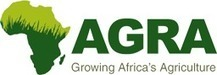 Africa Agriculture Status Report: Focus on Staple Crops | AGRA | Crops | Scoop.it
