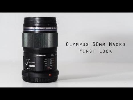 Olympus 60mm 2.8 Macro Lens for M43 Review   Mirrorless Central   olympus 60mm f2.8   Scoop.it