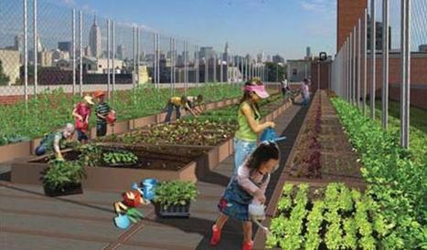 New York City: The school garden is the new classroom | Sustainable Cities | (Culture)s (Urbaine)s | Scoop.it